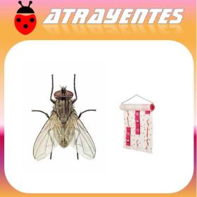 ATRAPAMOSCAS Rollo adhesivo 900 x 30 cm