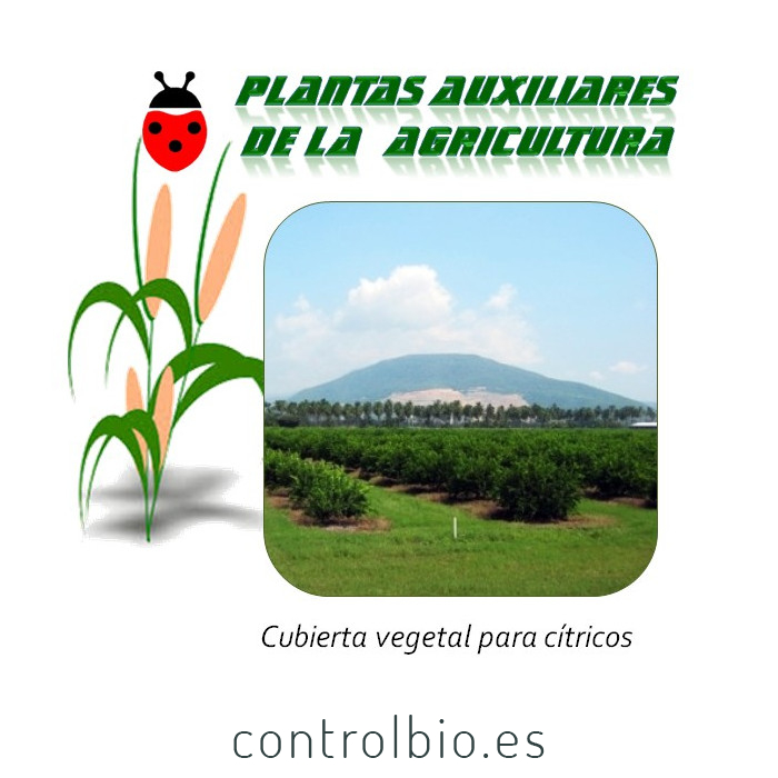 Cubierta vegetal para cítricos 10 Kg