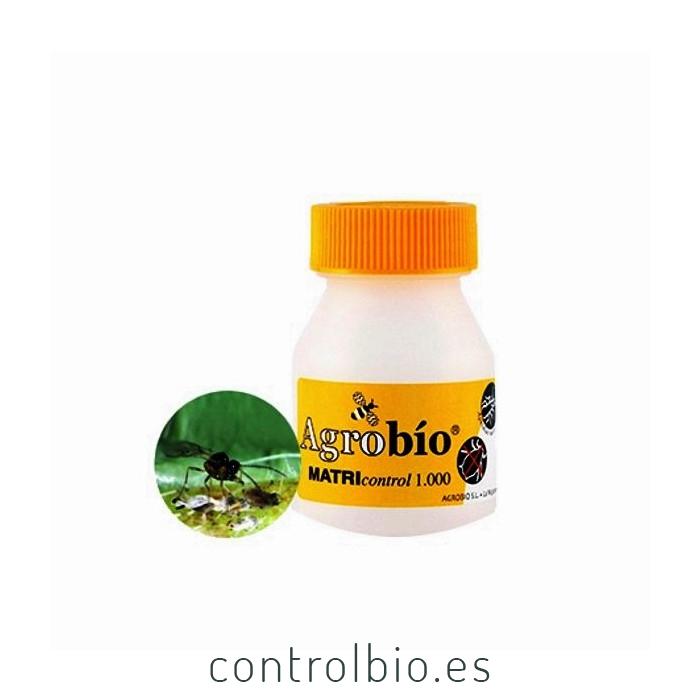 MATRIcontrol 500 Aphidius matricariae parasitoide de pulgones