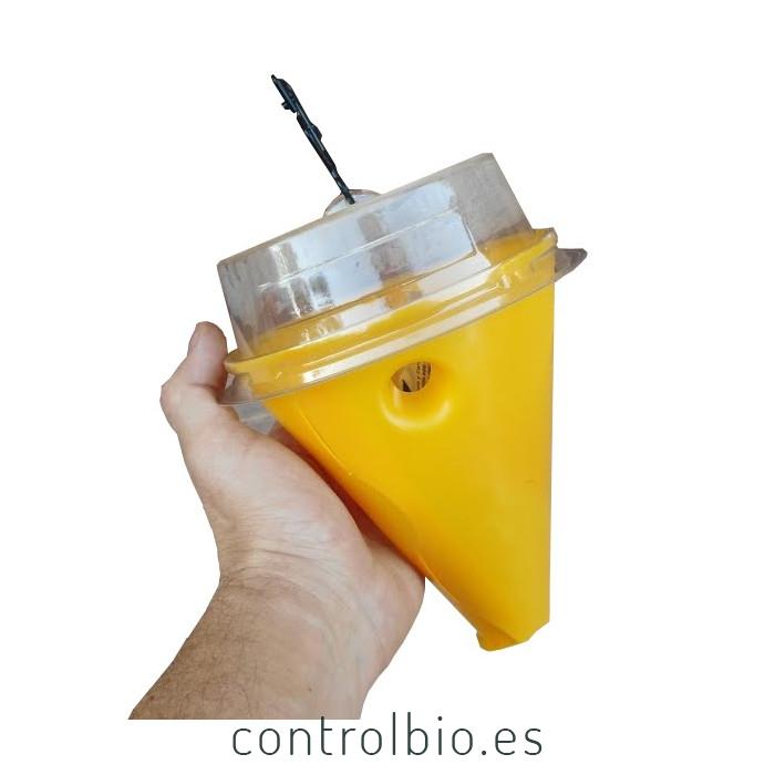 CERATIPACK Trampa + cebo + insecticida contra mosca de la fruta
