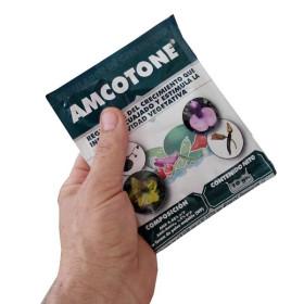 Fitorregulador 10 gr AMCOTONE