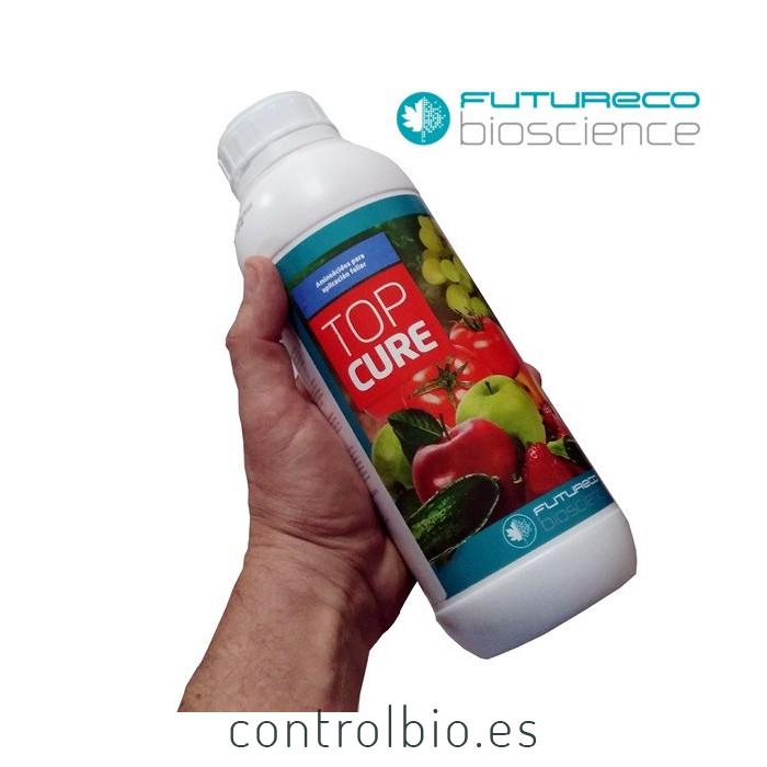 TOPCURE aminoácidos para aplicación foliar