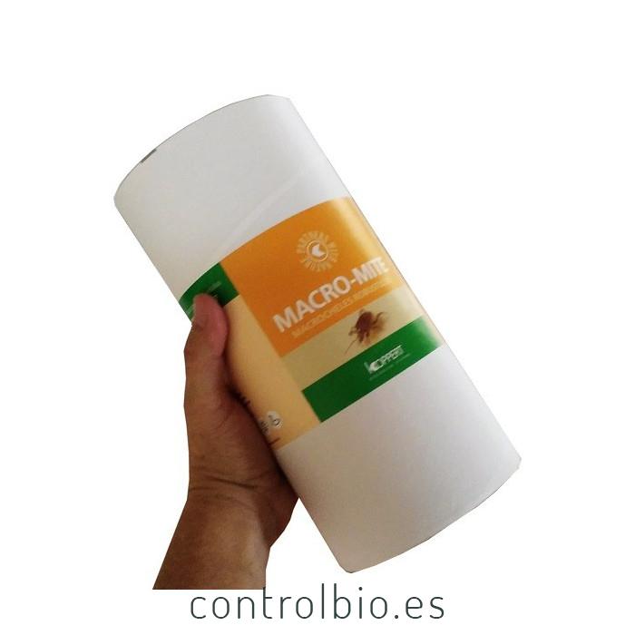 MACRO-MITE Macrocheles robustulus ácaro depredador de suelo