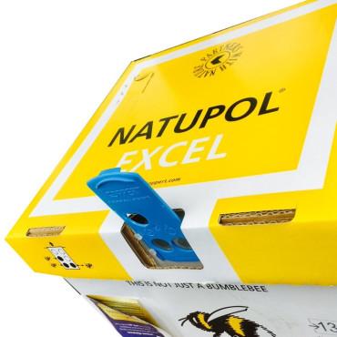 NATUPOL EXCEL nueva colmena KOPPERT