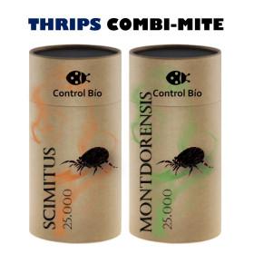 THRIPS COMBI-MITE 50000 Montdorensis + Scymitus