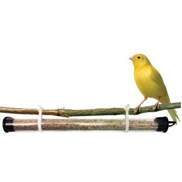 ANDROLIS M enemigo natural del Ácaro rojo de las aves