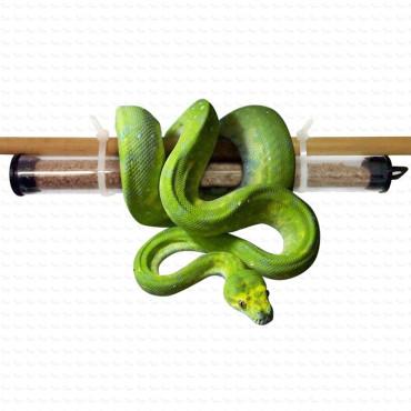 TAURRUS M enemigo natural del ácaro de los reptiles