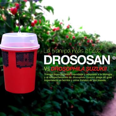 DROSOSAN mosquero para Drosophilla suzukii