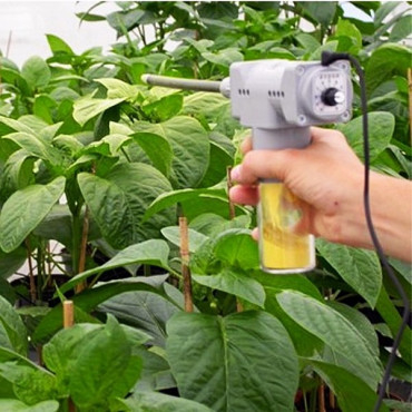 NUTRIMITE 50 gr polen de Typha