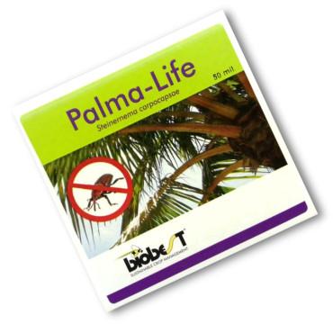 PALMA LIFE 250 nematodos contra picudo rojo (10-20 palmeras)