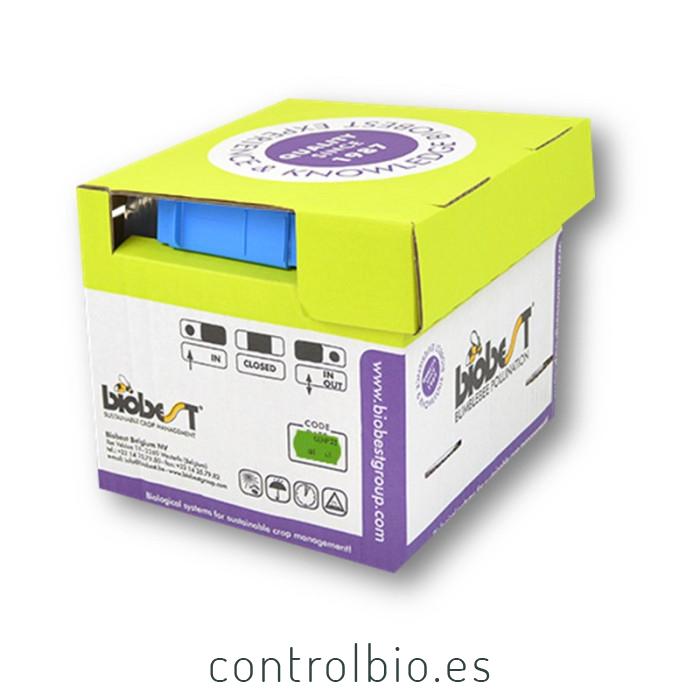 MINI HIVE Colmena Biobest
