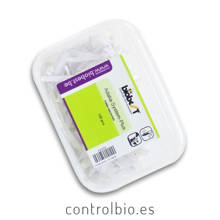 ADALIA system 100 larvas Adalia bipunctata contra pulgón