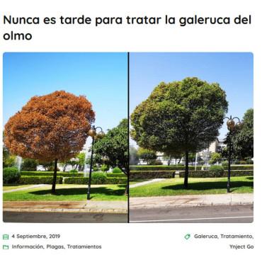 YNJECT GO GALERUCA DEL OLMO