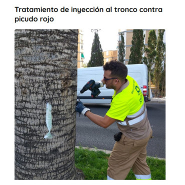 Ynject InBag inyecciones masivas al tronco