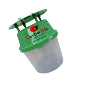 Polillero verde funnel base transparente