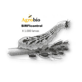 SIRFICONTROL 1000 larvas Sphaerophoria rueppellii depredador de pulgon