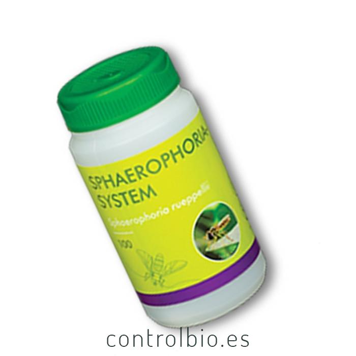 SPHAEROPHORIA SYSTEM 100