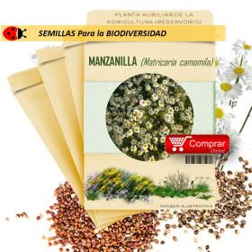 MANZANILLA Matricaria chamomilla semillas