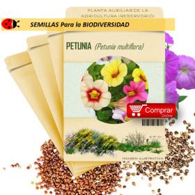 PETUNIA P. multiflora semillas