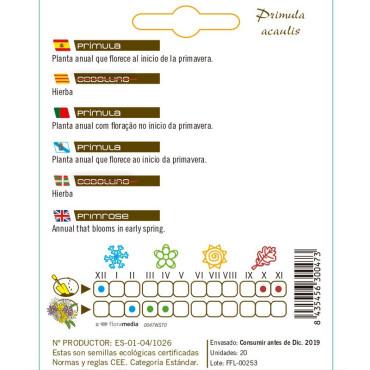 PRÍMULA P. acaulis semillas