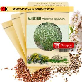 TRIGO SARRACENO Fagopyrum esculentum semillas x 100 g