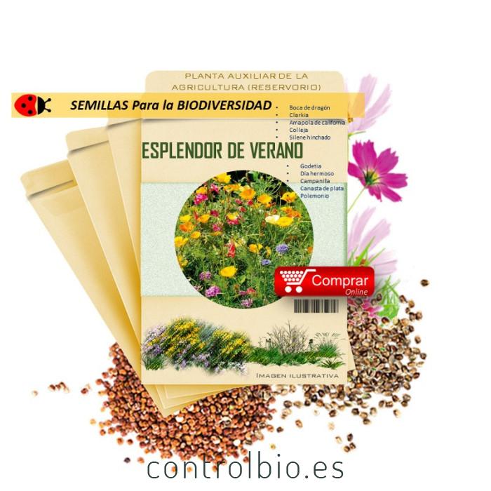 MEZCLA MELÍFERA semillas x 25 g