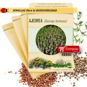 AJEDREA Satureja hortensis semillas x 2,5 g