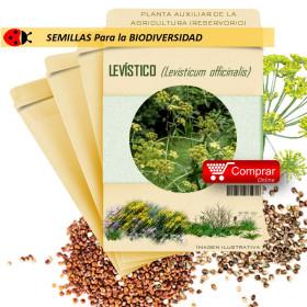 LEVÍSTICO Levisticum officinalis semillas x 2,5 g