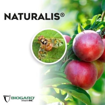 NATURALIS-L insecticida biológico de Beauveria bassiana 1L