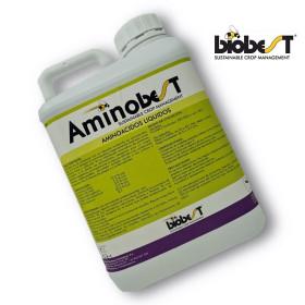 AMINOBEST 5L
