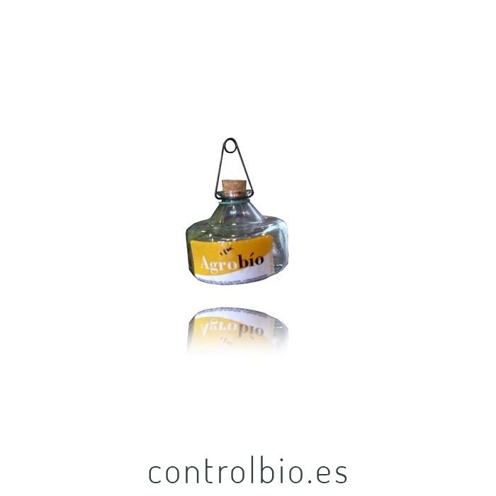 MOSQUERO DE CRISTAL (mosca del olivo)