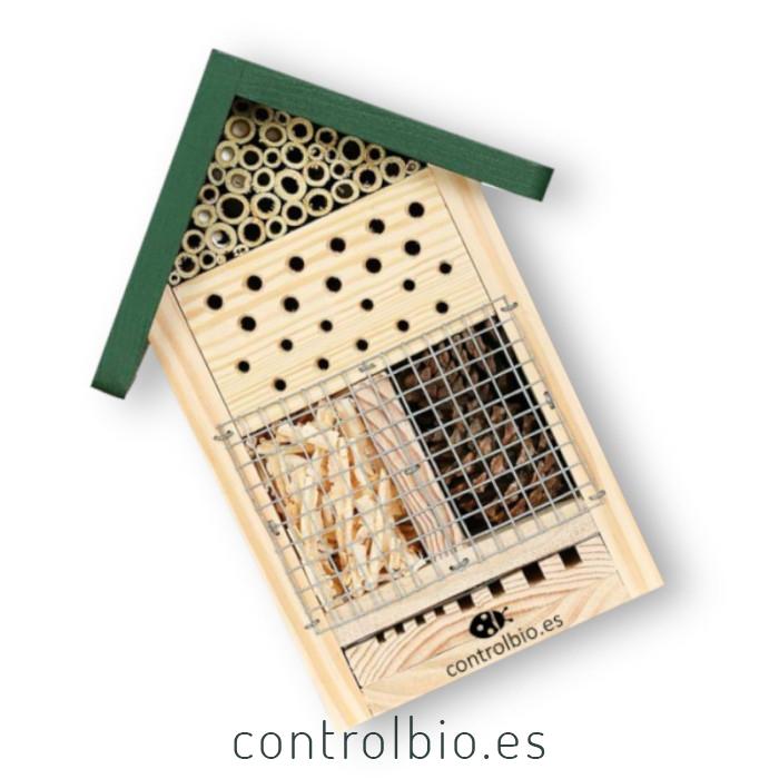 Hotel para insectos con observatorio