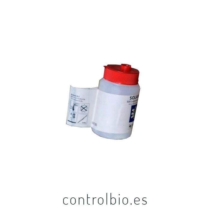 SOLANIPAR Leptomastix algirica