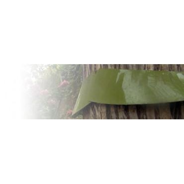 Barrera troncos (hormigas)