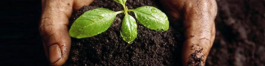 Abonos orgánicos ecológicos