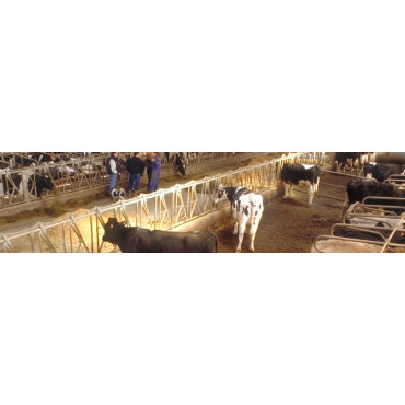 Trampas para granjas
