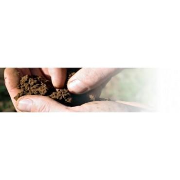 Biológico suelos